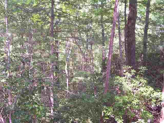 Photo of 354 Gauley Falls Road