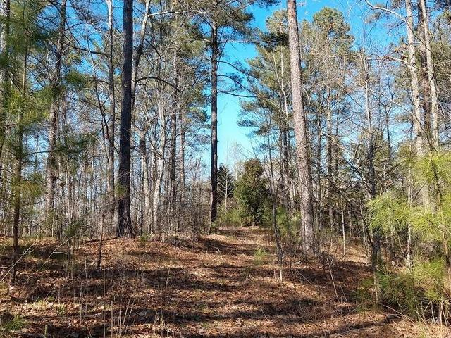 Photo of 329 Long Cove Trail