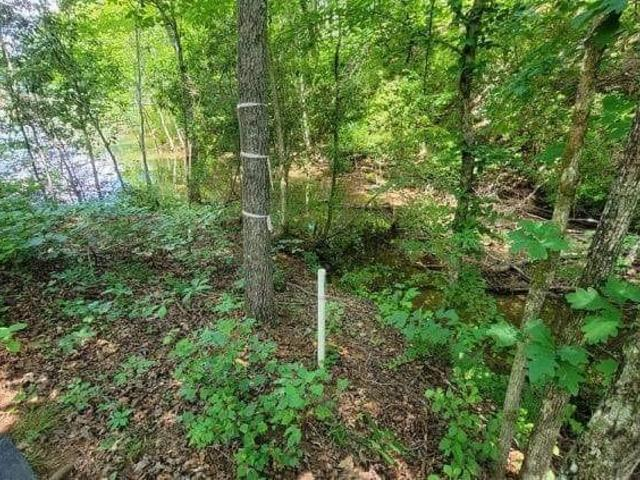Photo of Lot 101 Little River View Drive