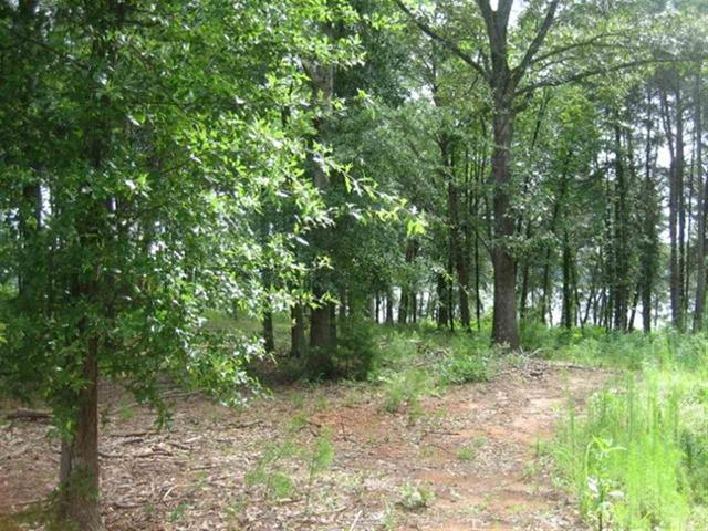 Photo of Lot 21 Laurel Ridge