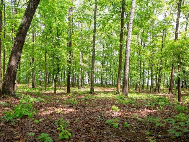 Photo of Lot 3 Spring Hollow Bark Shed Trail