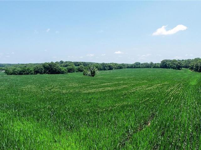 Photo of 228 Ledford Farm Road