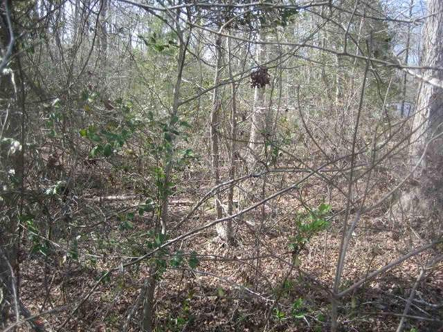 Photo of Lot 6B Brookside Drive