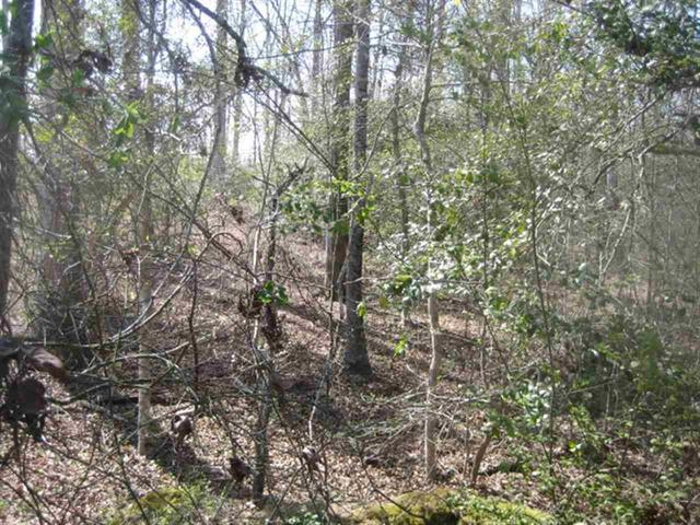 Photo of Lot 6B Brookside Dr