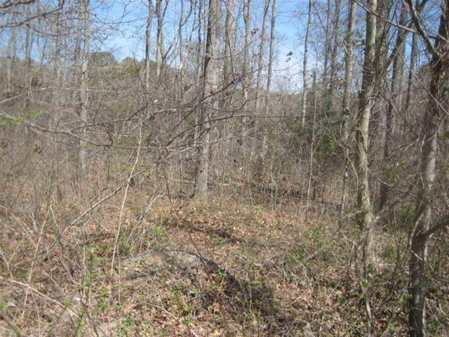Photo of Lot 3 Brookside Dr