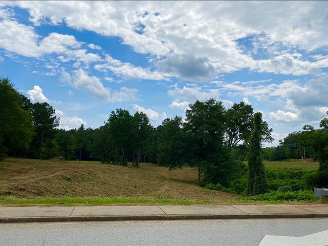 Photo of 0 West Georgia Road