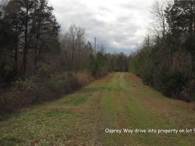 Photo of 00 Osprey Way