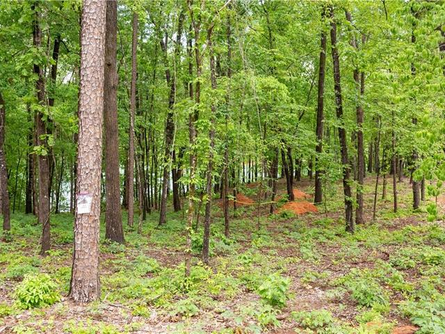 Photo of Lot 6 Spring Hollow Bark Shed Trail