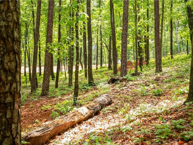 Photo of Lot 7 Spring Hollow Bark Shed Trail