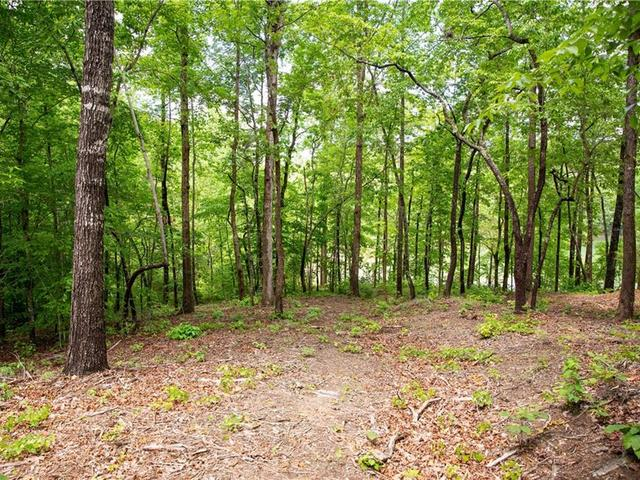 Photo of Lot 12 Spring Hollow Bark Shed Trail